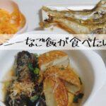 【ダイエット】ヘルシーなご飯が食べたい日の献立 和食でゆるダイエット