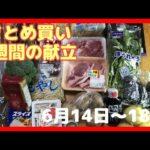 【献立】一週間のまとめ買いと毎日の夕飯の献立・6月13日夫婦2人暮らしのスーパー購入品・まとめ買い